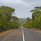 Road through Flinders Chase N.P., Kangaroo Is. Sth Aust. by Margaret  Hyde
