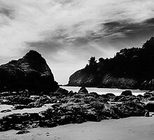 Muir Beach, California by leifrogers
