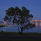 The tree by the port at night by Margaret  Hyde