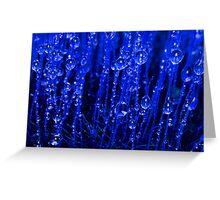 Blue Macro Moss Greeting Card