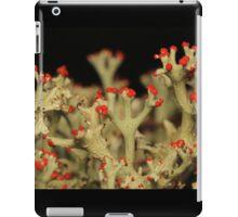 Cladonia Lichen iPad Case/Skin