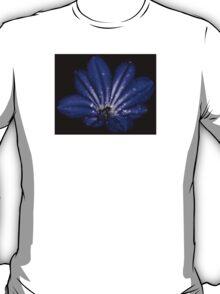 Storm Agapanthus T-Shirt