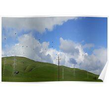 Napa Sonoma Hills Poster
