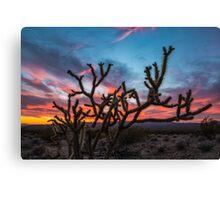 Mojave Desert Sunset Canvas Print