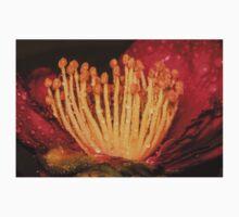 Camellia Bloom One Piece - Short Sleeve