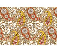 Pushie Paisley Photographic Print