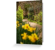 Country Path Greeting Card
