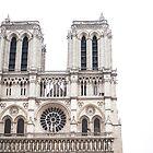 Cathédrale Notre Dame de Paris by Austen Risolvato