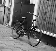 Bike Riding Amsterdam by Crystal  Ash