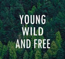 Born to be Wild Sticker