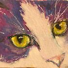 Cats eyes by christine purtle
