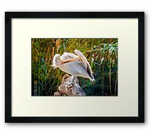The Wash Framed Print