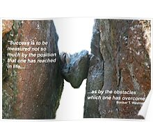 Overcoming obstacles Poster