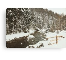Bridge In Snow Metal Print