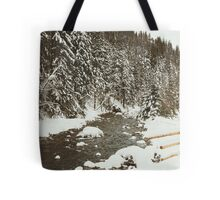 Bridge In Snow Tote Bag