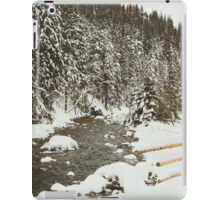 Bridge In Snow iPad Case/Skin