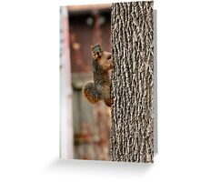 I am too cute! I think it ought to be Easter Squirrel! Greeting Card