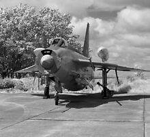 English Electric Lightning aircraft by Robert Gipson