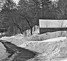 3/30/14 Snow by Carolyn Clark