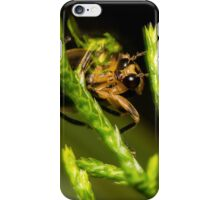Firefly (1) iPhone Case/Skin