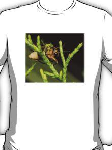 Firefly (1) T-Shirt