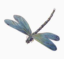 Blue Dragonfly by PatiDesigns