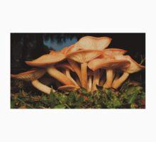 Fungal Beauty - Armillaria tabescens Baby Tee