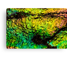 Intense Iridescence Canvas Print