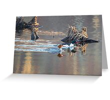 Sunrise In The Swamp Greeting Card