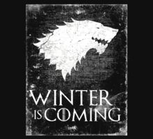 Winter is coming #2 by lab80