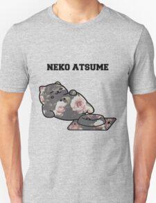 Big ol fat cat again T-Shirt