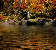 One Chance by Charles & Patricia   Harkins ~ Picture Oregon