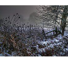 It Might Snow Photographic Print