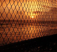Sunset through the fencing by Perggals© - Stacey Turner