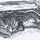Merlin by jedidiah morley