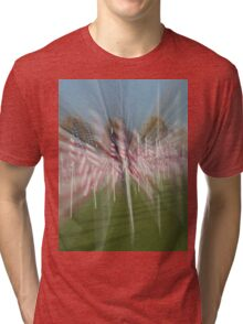 Flags Tri-blend T-Shirt