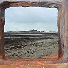 Framed by Tibbs