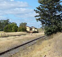Country NSW by PhotosByG