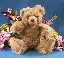My Teddy Boy by Vivian Eagleson