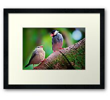 Must Be Love... Framed Print