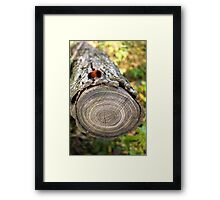 Wooly on Wood Framed Print