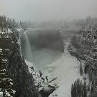 Helmcken Falls by Nordic-Photo