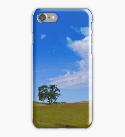 Green Below, Blue Above iPhone Case/Skin