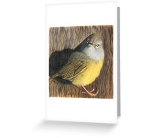 Female Tanager Greeting Card