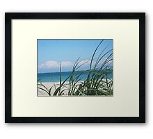 Beach Life, FL Framed Print