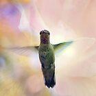 Bird of Light by Lynn Starner