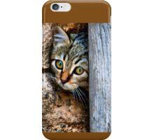 GATO 2 iPhone Case/Skin