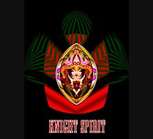 Knight Spirit who Flighs Hoodie