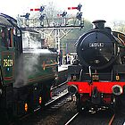 61264  - North Yorkshire Moor Railway by Photography  by Mathilde