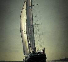 sailboat sailing by laikaincosmos